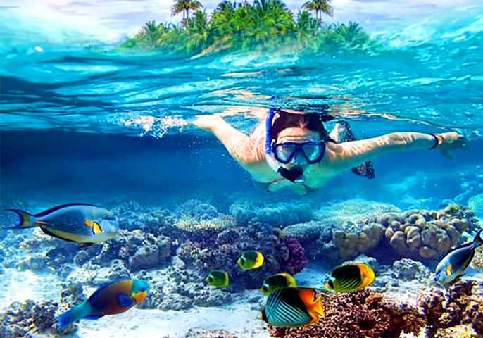 famous Unawatuna activities, snorkeling under the sea