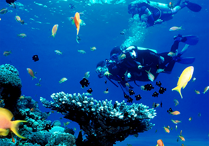 diving in unawatuna - one of the best water sports